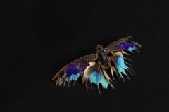 Platz 35 - Julia Siepert -Schmetterling