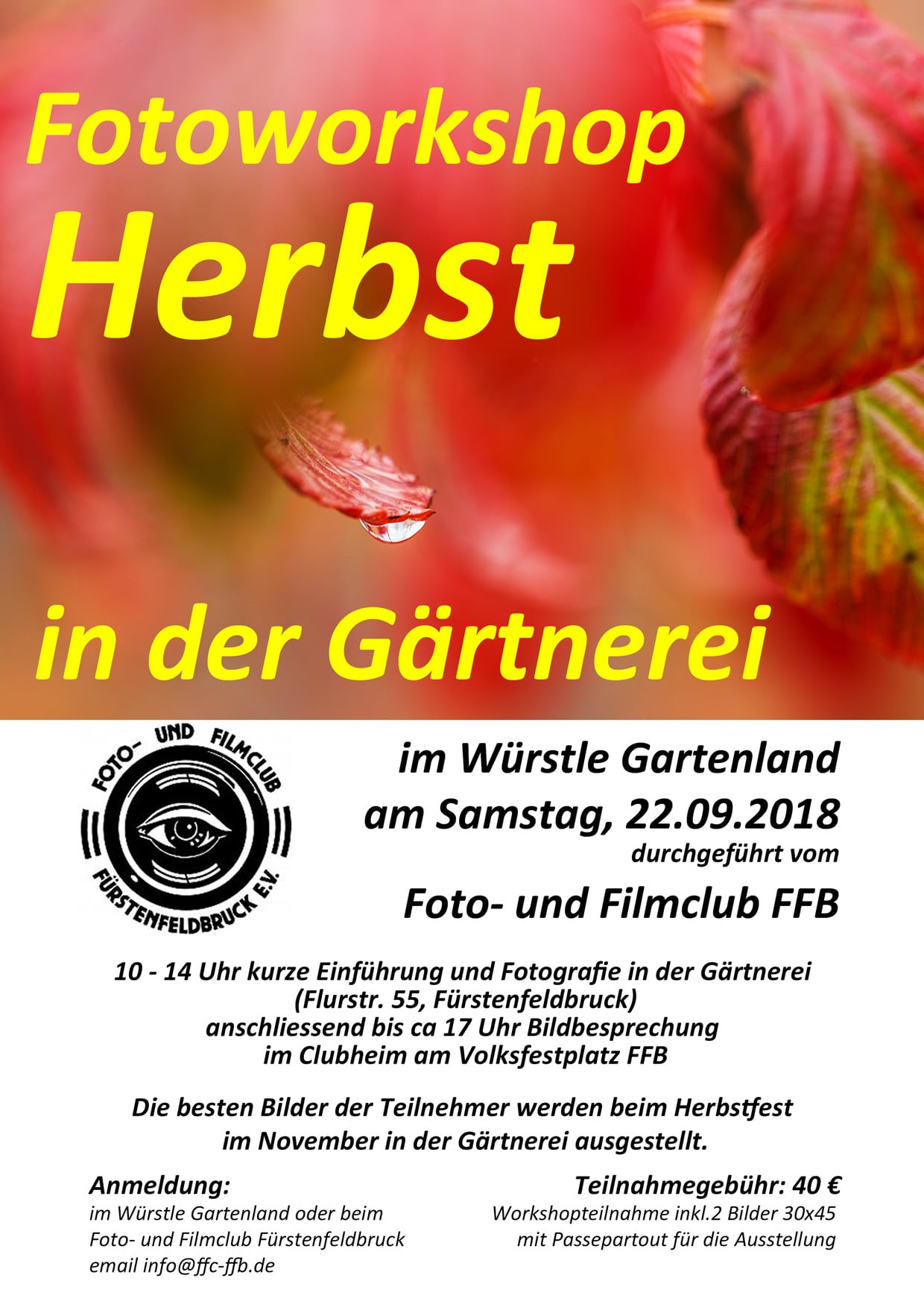 Herbstfotografie-2018_web.jpg